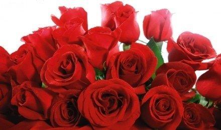 Картинки по запросу фото гарних букетів троянд